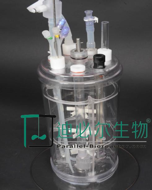 一次性生物反应器(质粒培养)BactoVessel 13 lite SUF