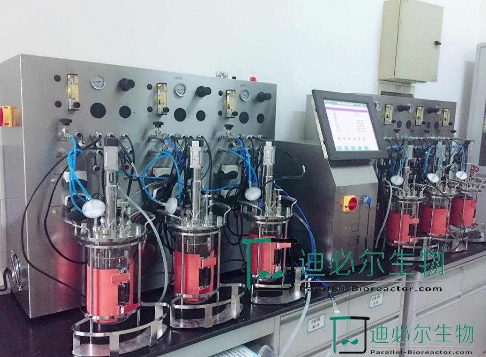 T&J-Qtype 平行生物反应器